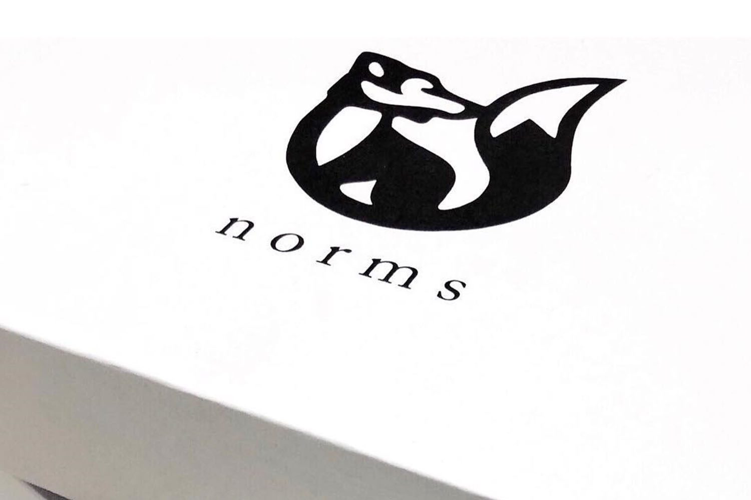 NORMS PROJECT 1