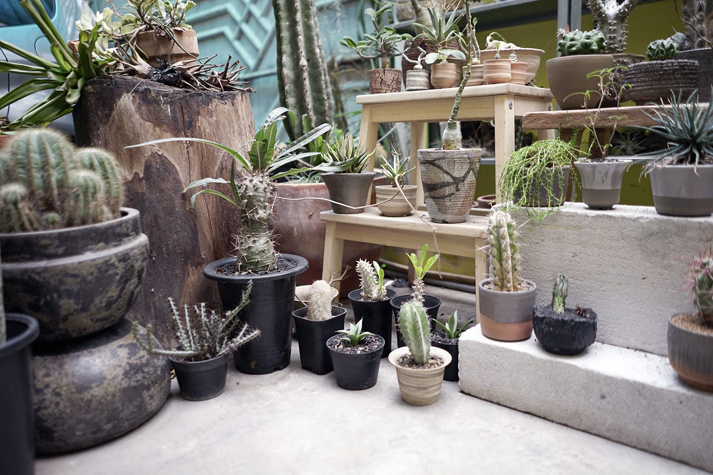Taman Hayat Local Garden Neighbourlist 10
